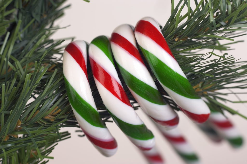 4 candy canes on a tree branch