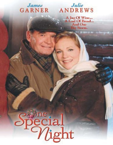 One Special Night TV movie poster