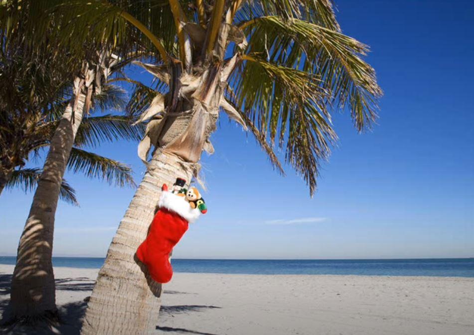 History of a song – Christmas Island